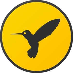Hemingboard-for-Mac-Hero-logo-icon