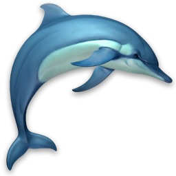 Dolphins-3D-logo-icon
