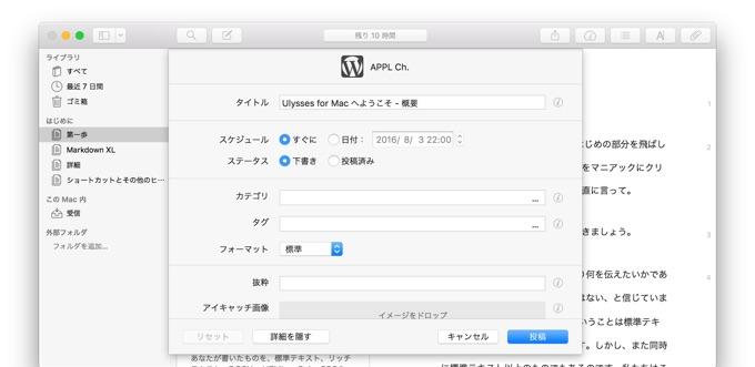 Ulysses-support-Wordpress-option