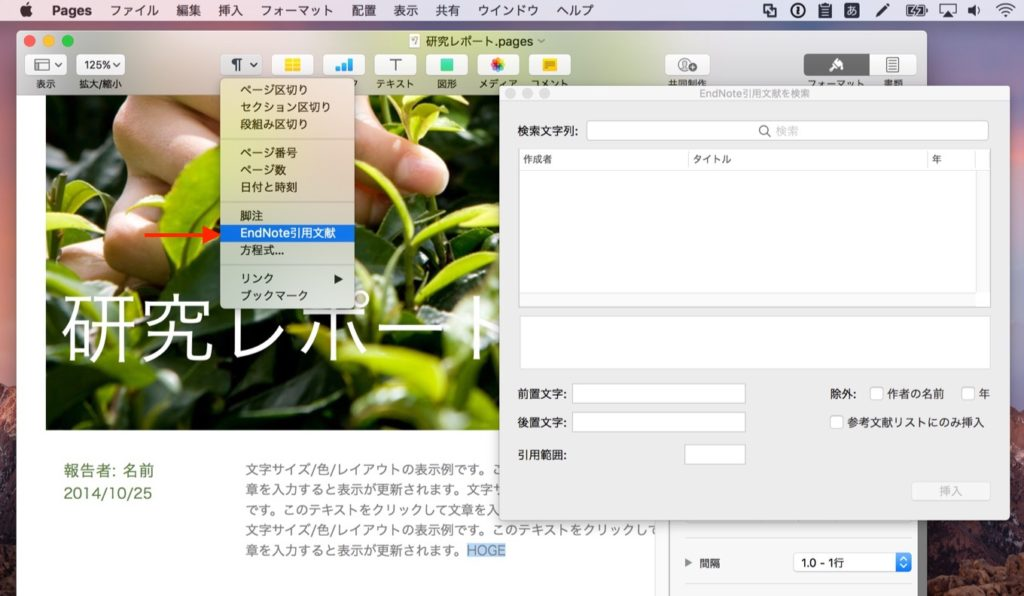 Pages for MacにEndNoteの文献を挿入する方法。