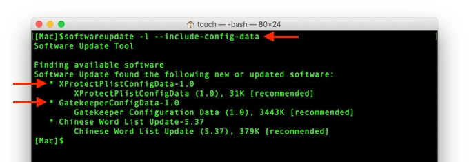 include-config-dataオプションを付けたsoftwareupdate