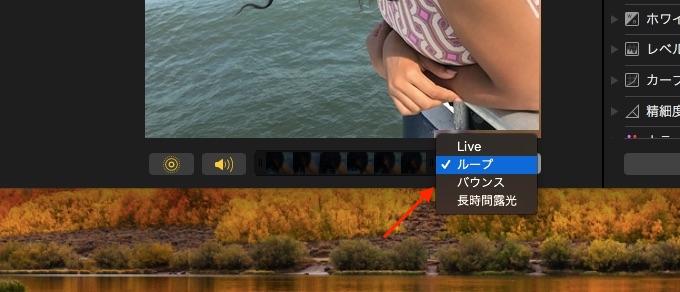 High Sierraの写真アプリでLive Photoの再生方法を編集