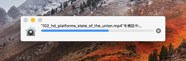 macOSのファイルを検証中