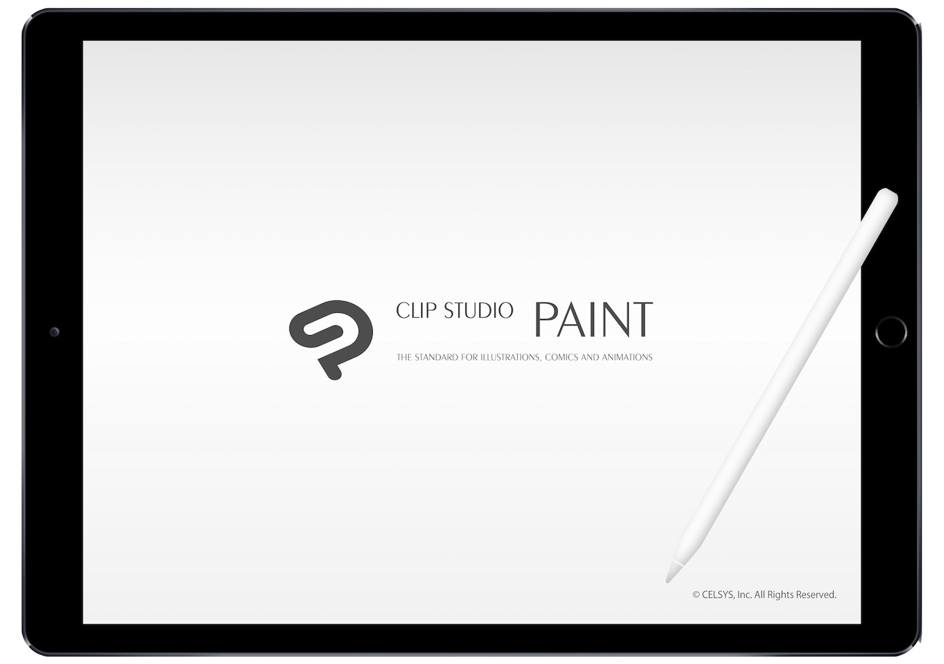 CLIP STUDIO PAINT EX for iPad