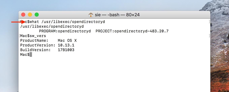 opendirectorydのプロジェクトバージョンのチェック方法