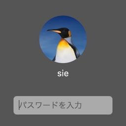 スクリーンロックのパスワード入力