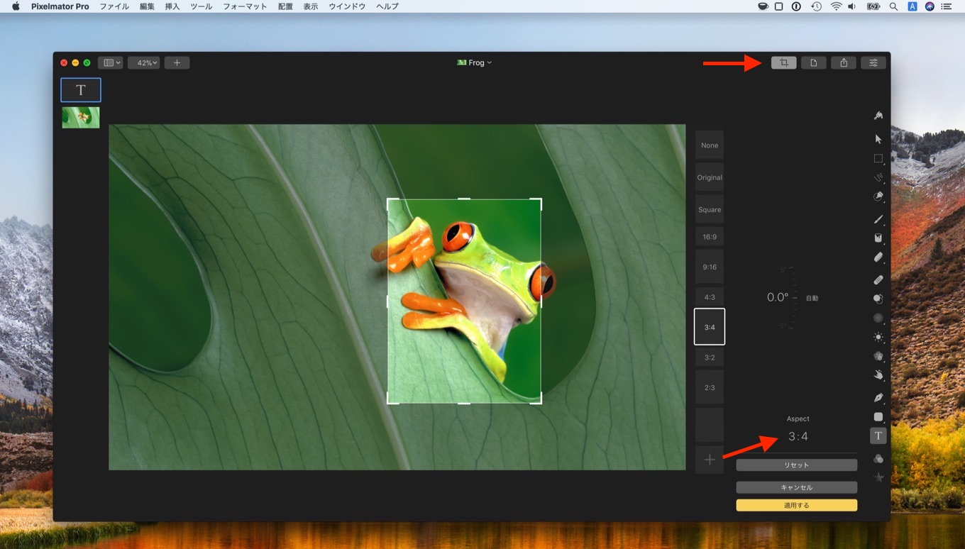 Use the Crop tool to crop with your own custom ratios.