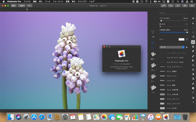 Pixelmator Pro 1.2.4 Quicksilver