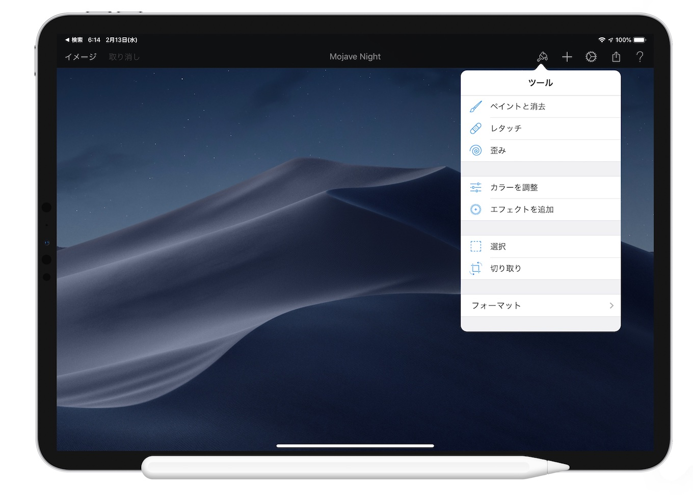 Pixelmator for iPad Pro (2018)