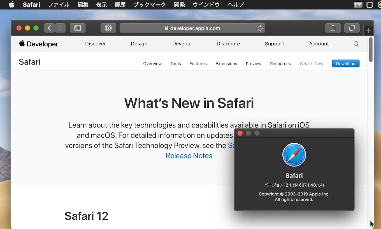 Safari v12.1