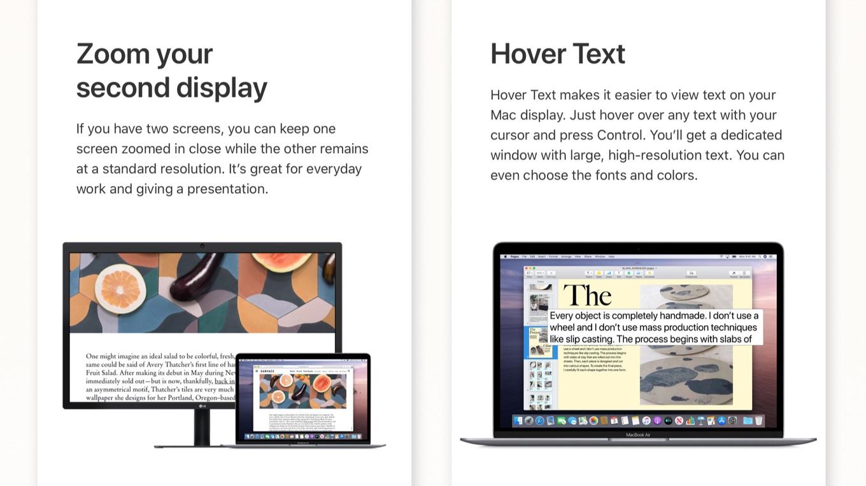 macOS 10.15 CatalinaのZoom Display