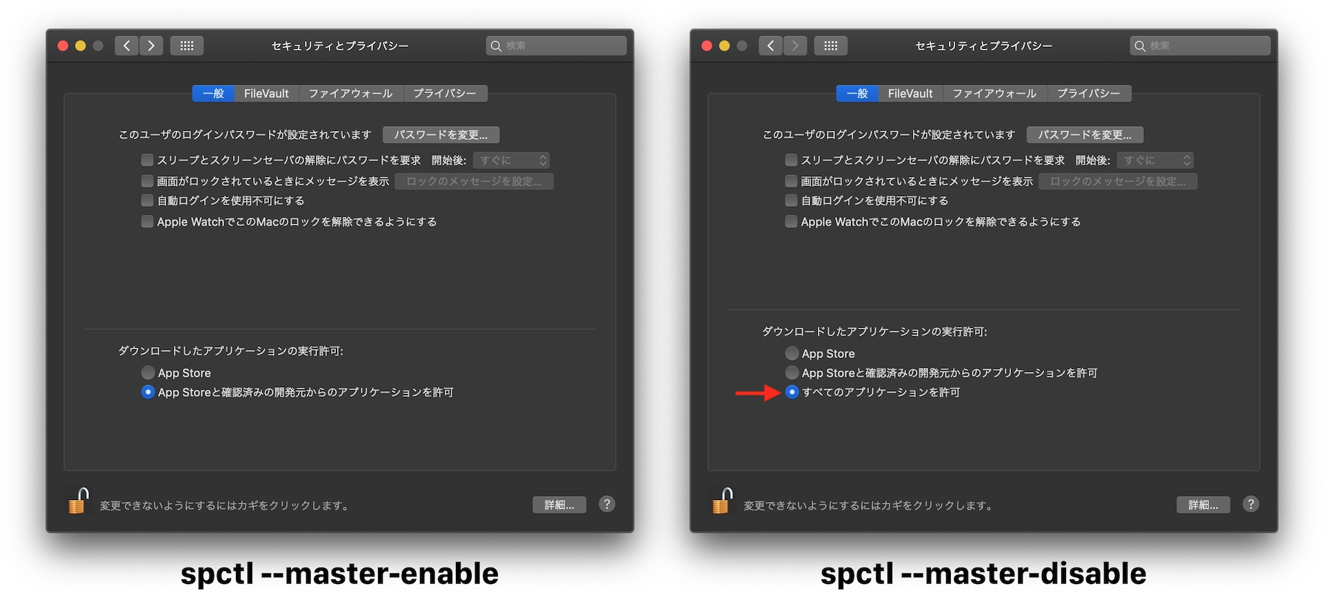 Gatekeeper spctl --master-disable