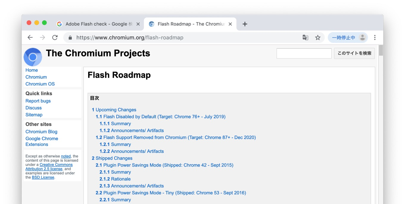 Google Flash roadmap