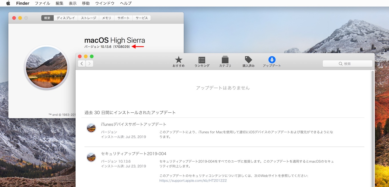 macOS 10.13 High Sierra Security Update 2019-004 build 17G8029