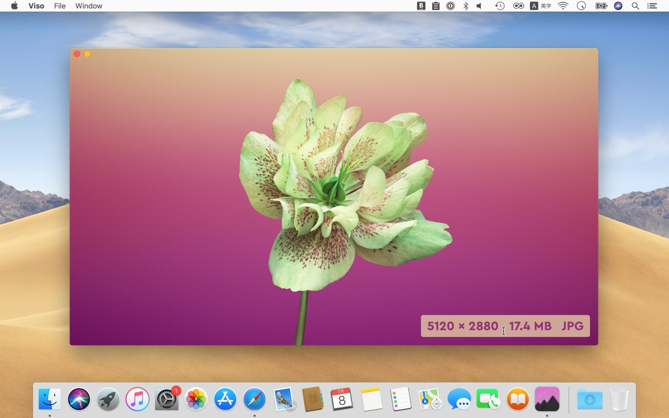 Viso image  viewer for MacOS