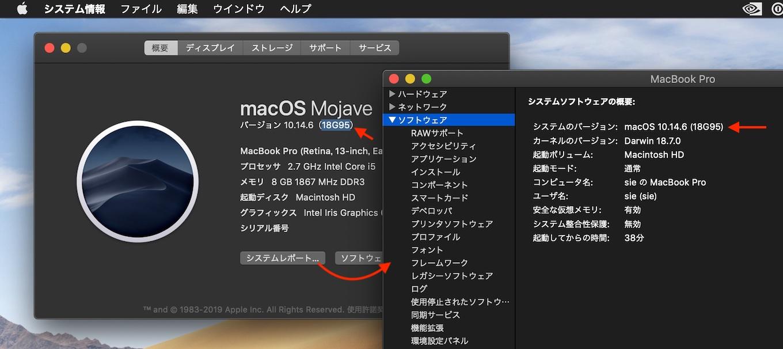 macOS Mojave 10.14.6 Build 18G95