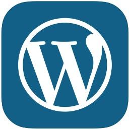 Automattic オフライン中でもインターネットに関連する操作を可能にした Wordpress For Ios V13 6 をリリース pl Ch