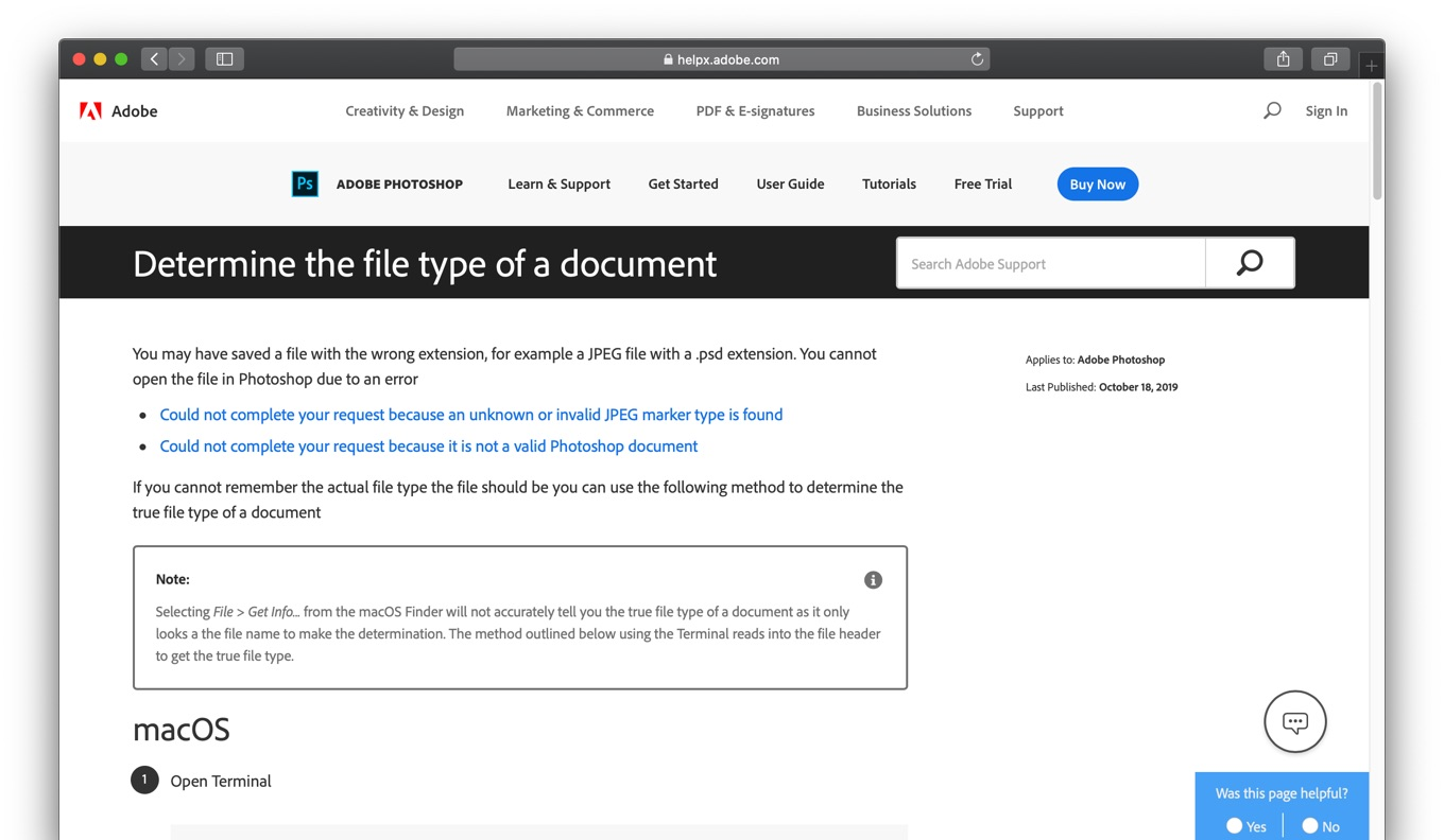 Determine the file type of a document