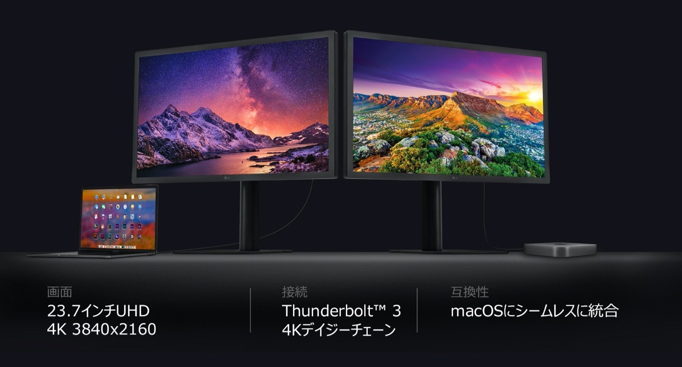 LG UltraFine 4K Display 24MD4KL-B