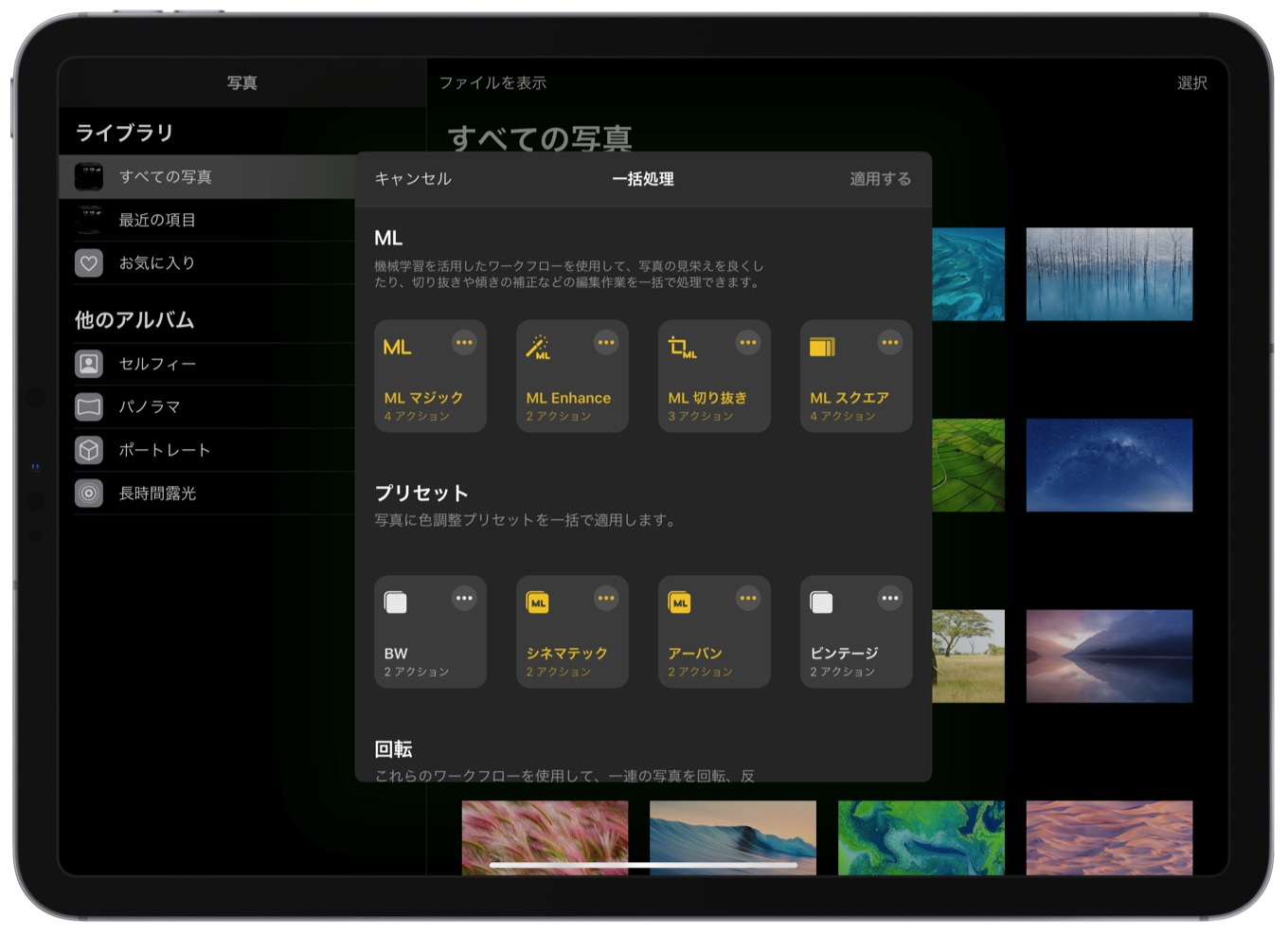 Pixelmator Photo for iPadバッチ処理2