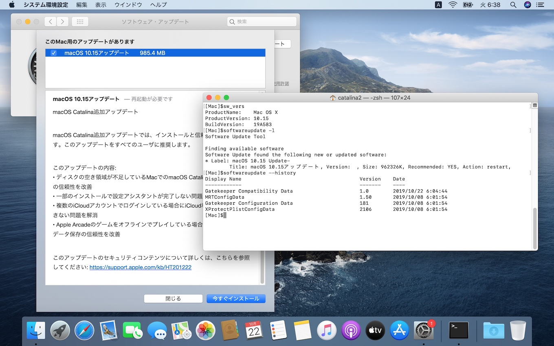 macOS 10.15 Catalina Build 19A603