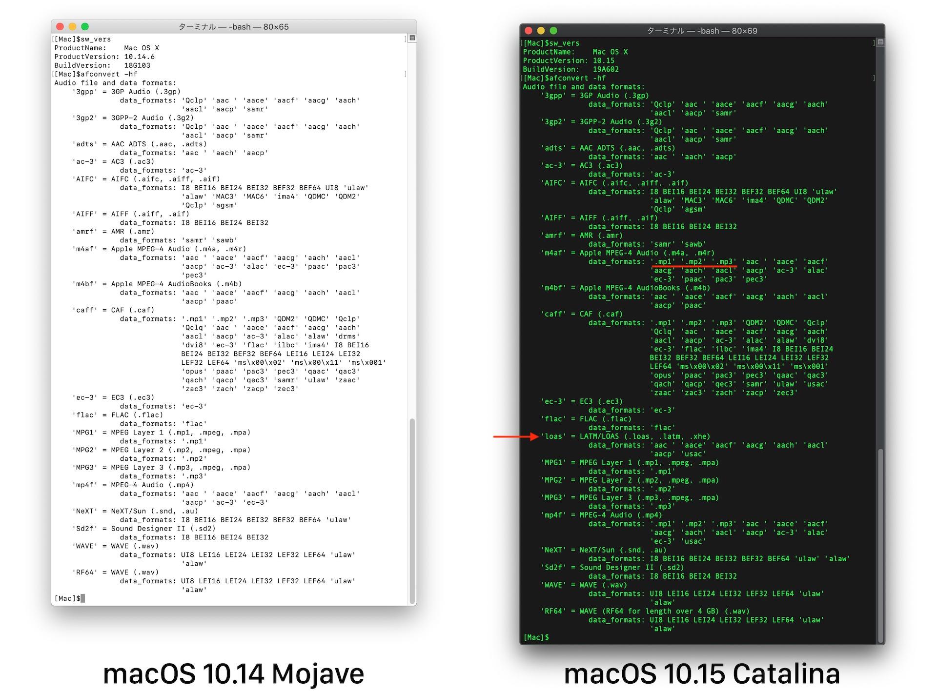 macOS 10.15 CatalinaのLATM/LOASフォーマット