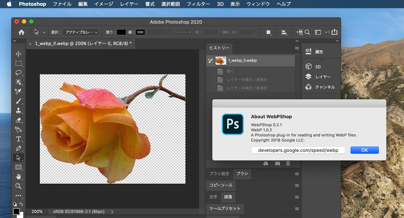 WebPShop.plugin for Adobe Photoshop