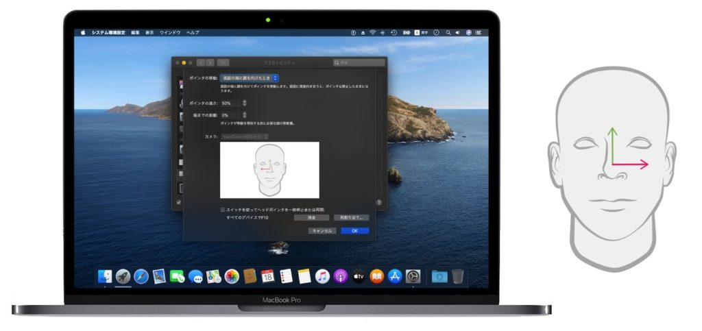 macOS 10.15 Catalina Accessibility head pointer
