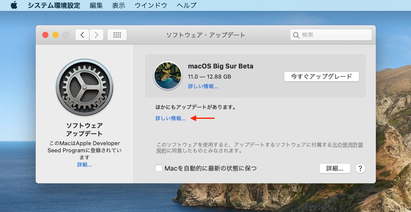 macOS Big Sur beta 3 Build 20A5323l full install image