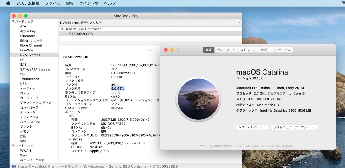 MacBook Pro (13-inch, Early 2015)にCrucial P2