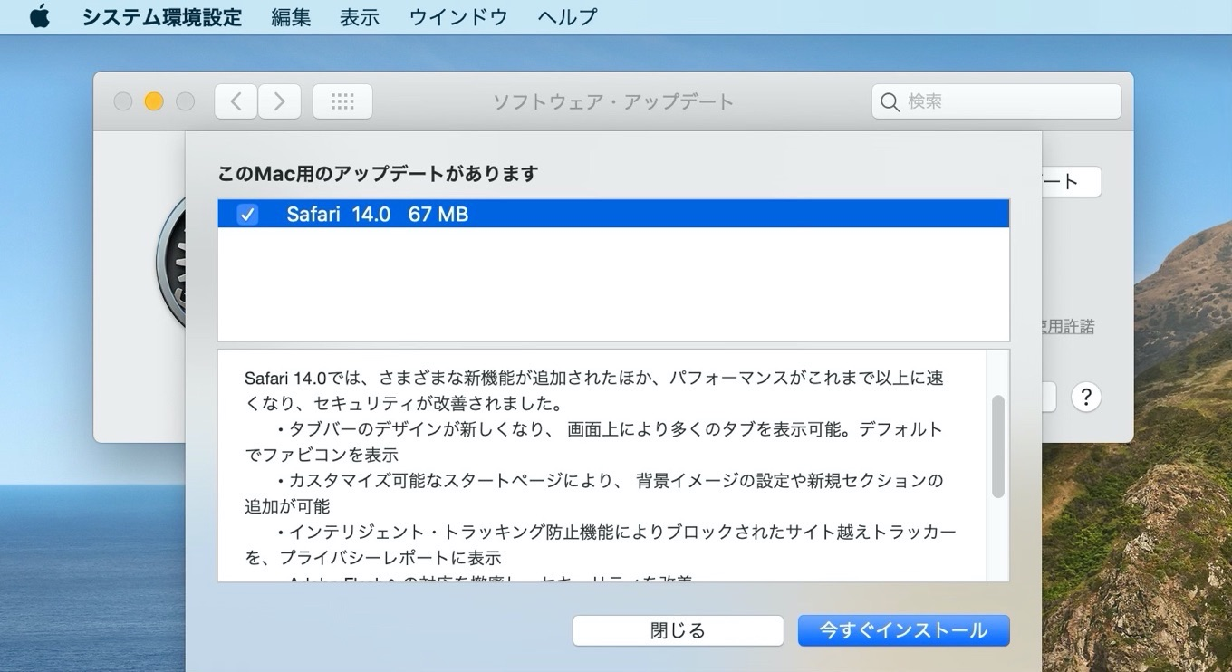 Safari 14 update
