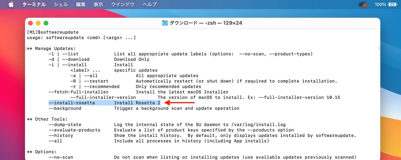 softwareupdate --install-rosetta