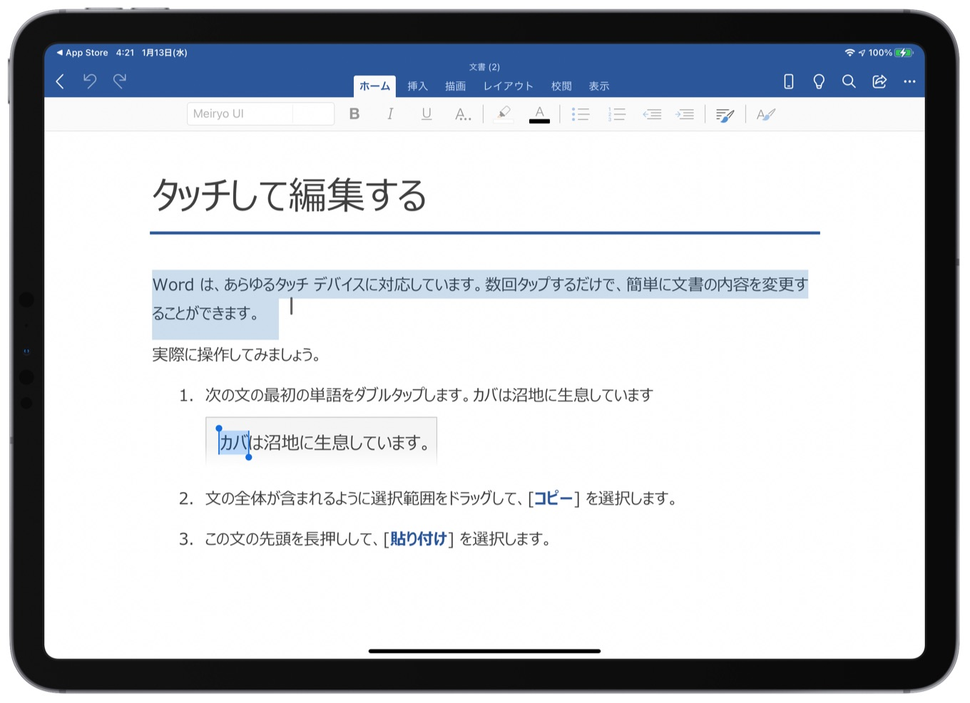 Word for iPadOS v2.45