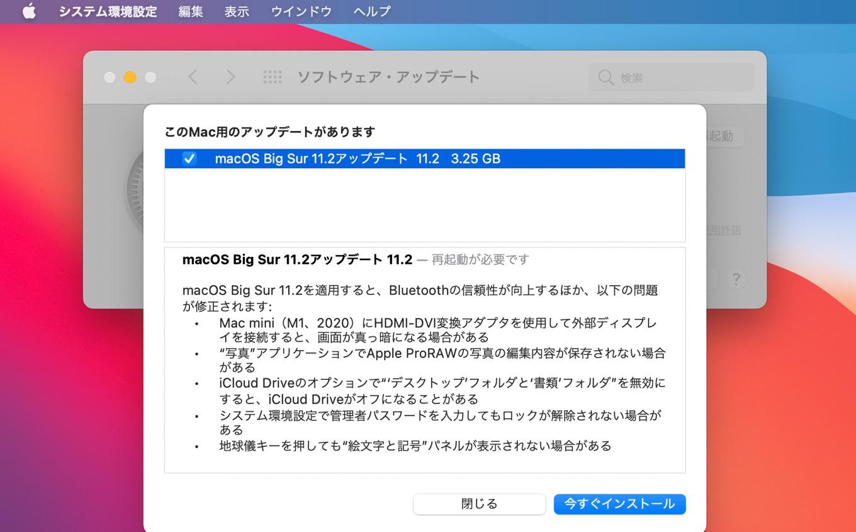 macOS Big Sur 11.2 (20D64)
