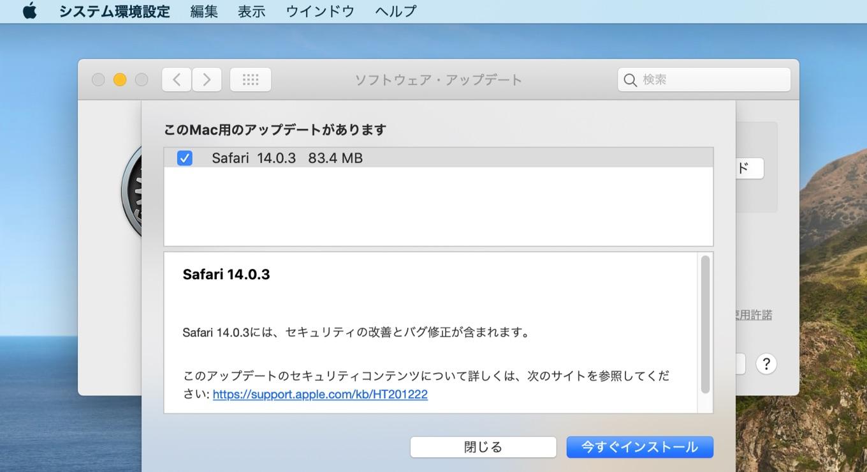 Safari 14.0.3 New build