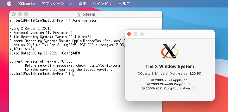 Xorg-Server-1.20.10