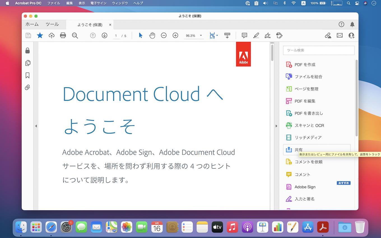 Adobe Acrobat DC 21.007.20091
