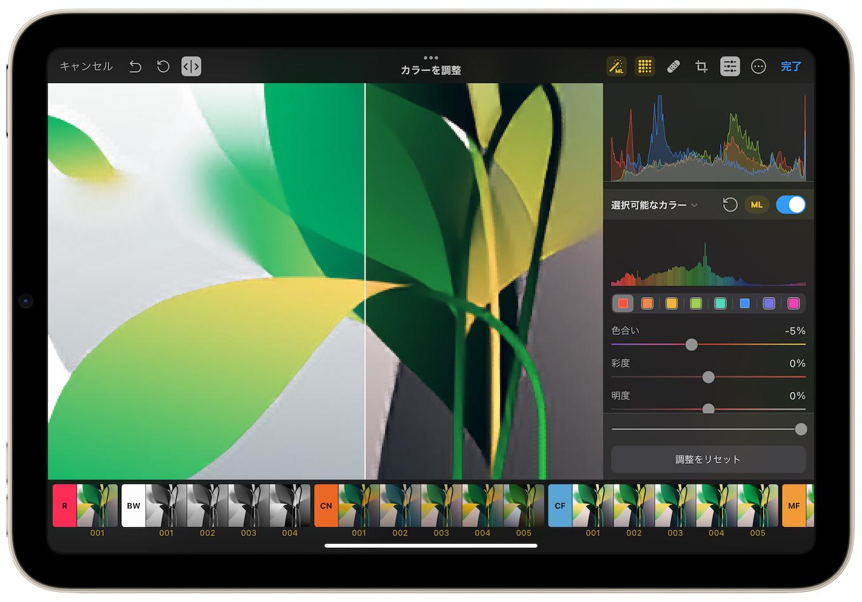 sixth-generation iPad mini wit Pixelmator